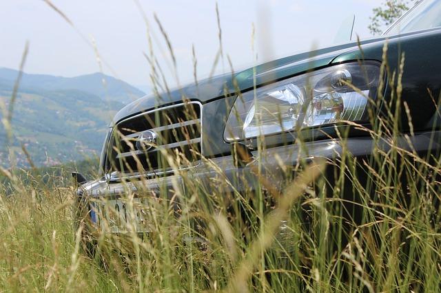 lovecké auto v přírodě