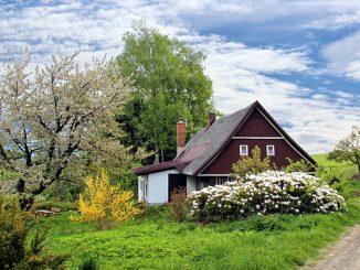 Exekuční dražby nemovitostí
